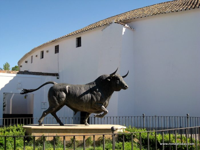 A casa del bull casertano - 2 10